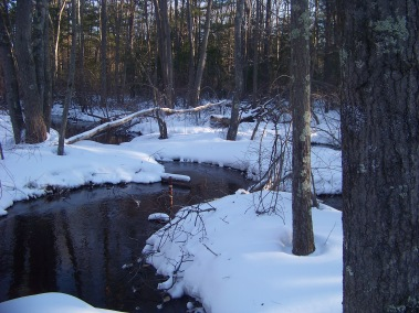 stream in winter in rockland town forest