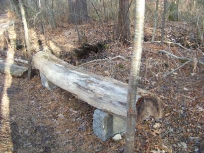 bench on ingeno hiking trail