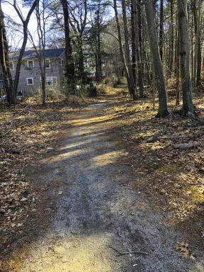Negus Park alternate trail
