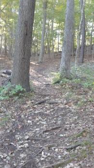 beginning climb at rocky run conservation