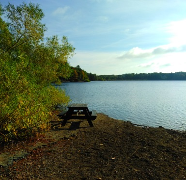 Picnic table at the boat launch into Aaron Reservoir at Wompatuck State Park.