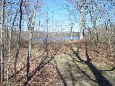 scenic overlook on around cleveland pond trail