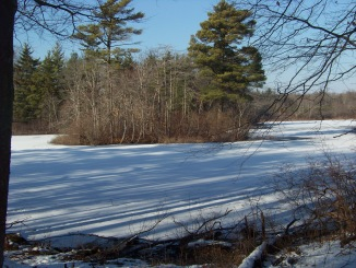 view of island in cleveland pond in winter
