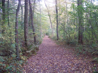 wide trail in fall at ames nowell state park