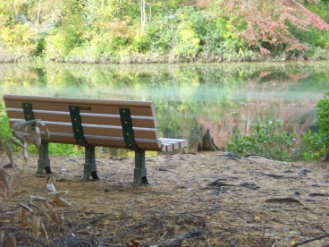 bench along cleveland pond at ames nowell in abington