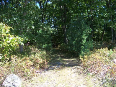 second portion of around cleveland pond trail