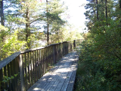 western side boardwalk in Ames Nowell State Park