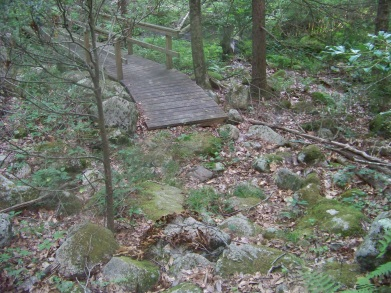 maxwell trail bridge at bates lane conservation area