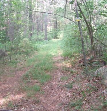 Litchfield Trail from Bates Lane Trail