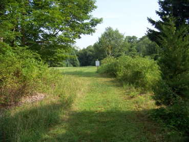 grassy trail through litchfield preservation