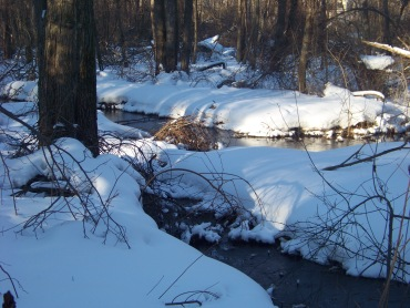 french's stream on blue loop in rockland