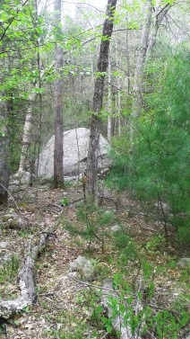 boulder at the edge of Indian Head River