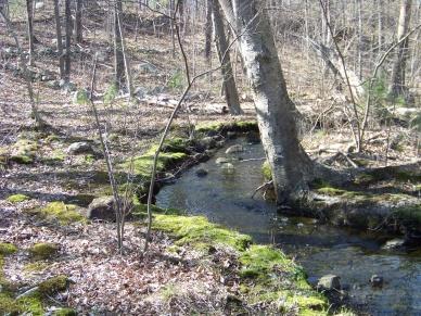 brook that runs through bradford torrey bird sanctuary