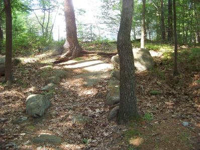stone lined entrance trail into bradford torrey bird sanctuary
