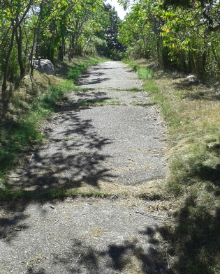 The hiking trail circles the other side of Bumpkin Island.