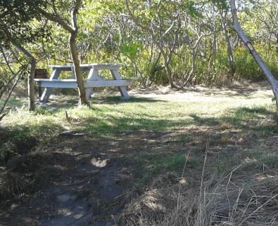 beach side camp site number twelve on Bumpkin Island.