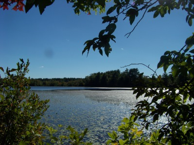 Indian Reservoir pond at Burrage Wildlife Management Area