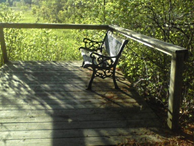 observation deck on the hiking trails at camp wing conservation area