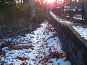 trail along parking area at canoe club preserve