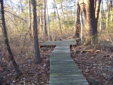 platform on canoe club trail