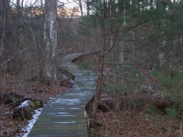 nearing the end of the boardwalk on canoe club preserve trail
