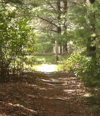 blue blaze trail leads out to a cart path in thaddeus chandler sanctuary