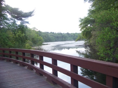 view from the Cliff Prentiss Bridge into Jacobs Pond