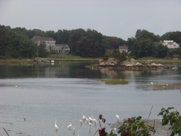 little harbor in cohasset