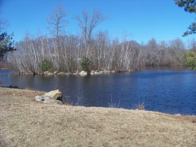 little island in Hobarts Pond