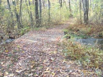 bridge after kiosk at cranberry pond