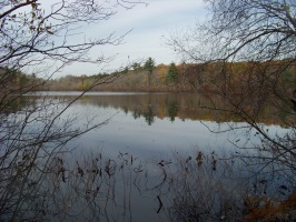 cranberry pond in braintree