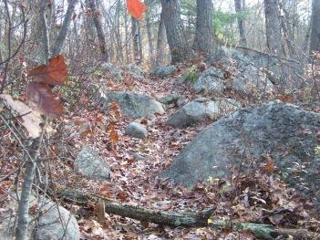 rocky blue dot trail at cranberry pond