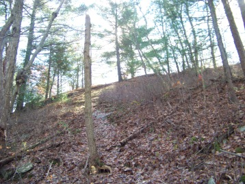 ridge above blue dot trail at cranberry pond
