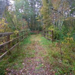 Hiking trail natural bridge.