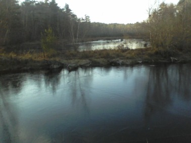 crowell-conservation in Duxbury