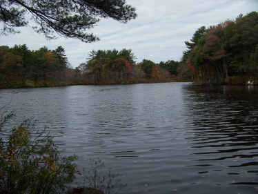 view from cushing point on cushing pond