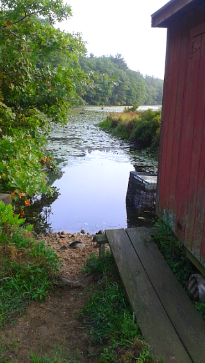 View of Cranberry Factory Pond along a pump house at Duxbury Bogs.