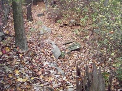 boardwalk step over in eel river woods