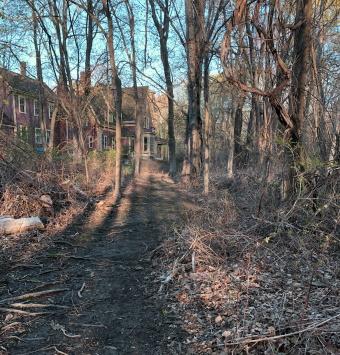 trail runs up behind the estate