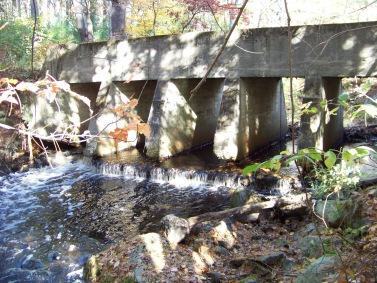 bridge over Drinkwater river after it lets out from Forge Pond