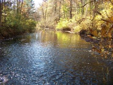Drinkwater River in Hanover