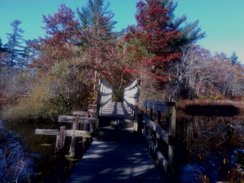 bridge over factory pond on fireworks trail