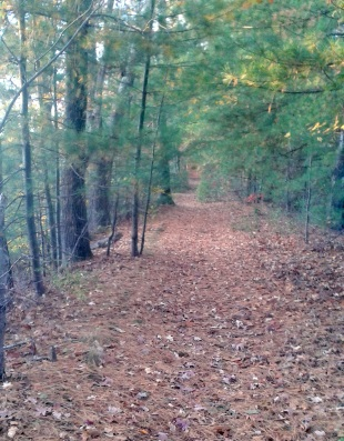 donald flaherty trail in whitman