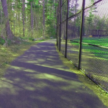 A walking trail behind softball fields at Forge Pond Park.