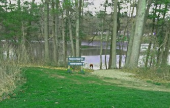 Forge Pond Park Boat Launch