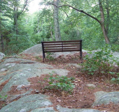 A large rock outcropping forms an observation area with a bench.