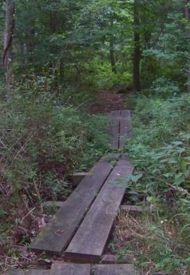 A portion of boardwalk hiking trail through George Ingram Park.