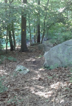 Hiking trail leads through area with many boulders.