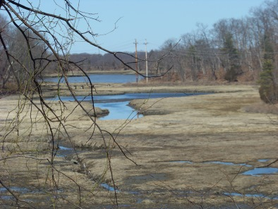 early spring view at great esker park