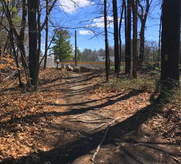 Trail leads into Negus Park